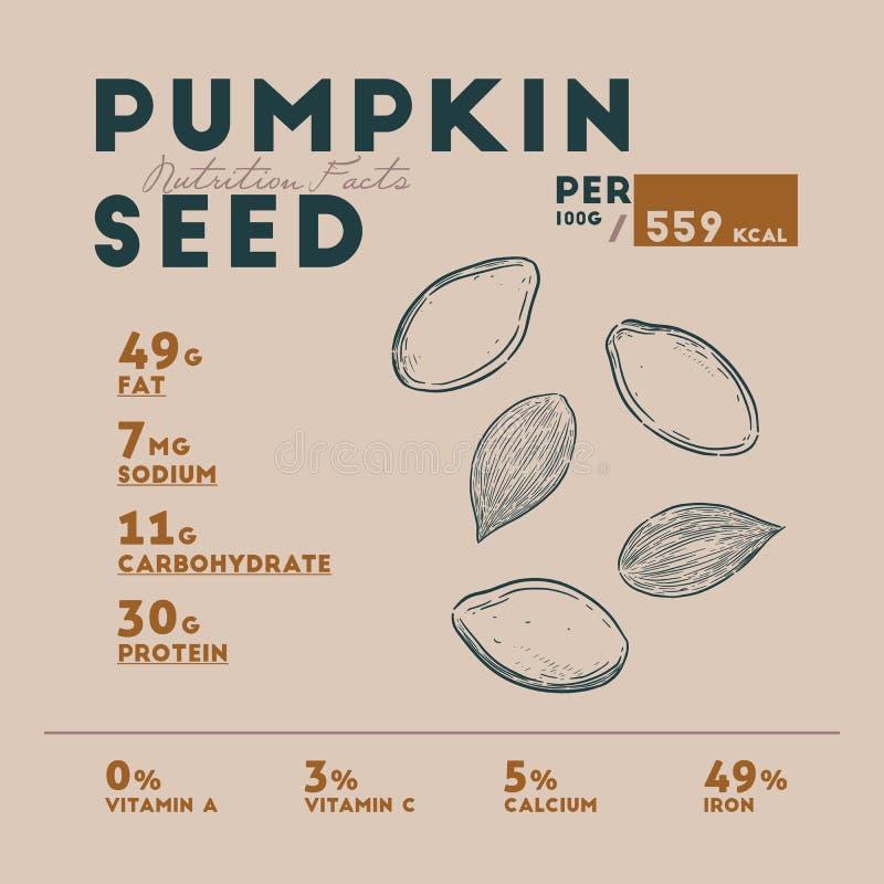 Hechos de la semilla de calabaza, vector de la nutrición del drenaje de la mano ilustración del vector