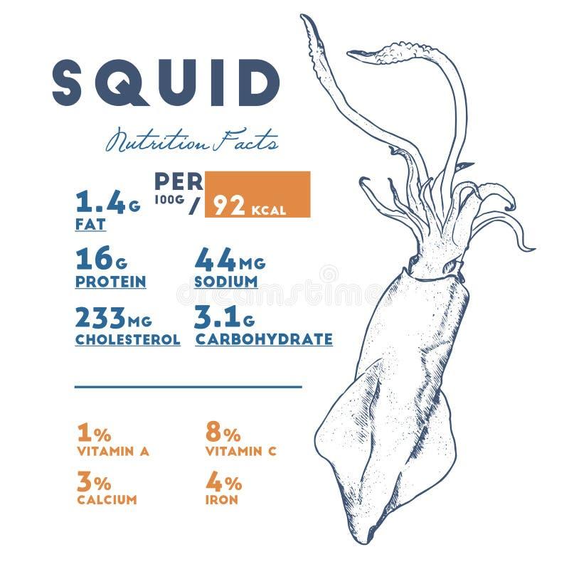 Hechos del calamar, vector de la nutrición del bosquejo del drenaje de la mano libre illustration
