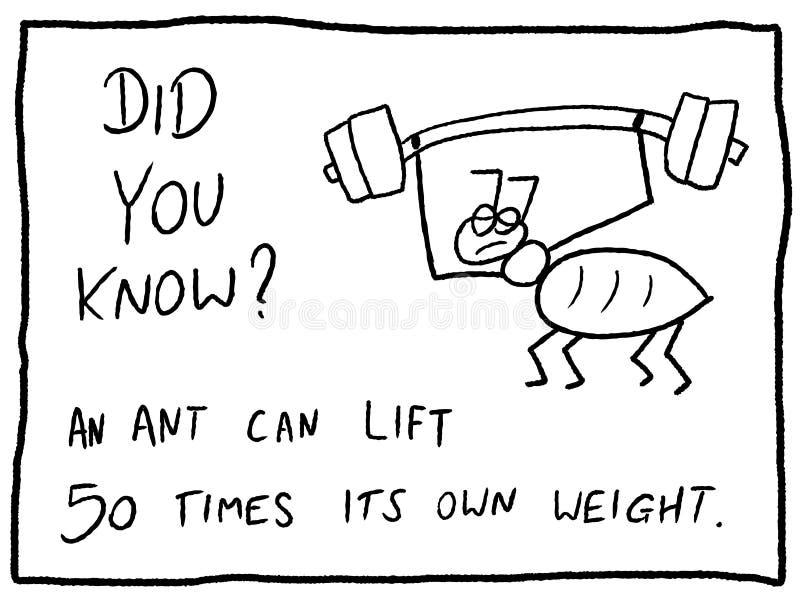 Hechos del insecto libre illustration
