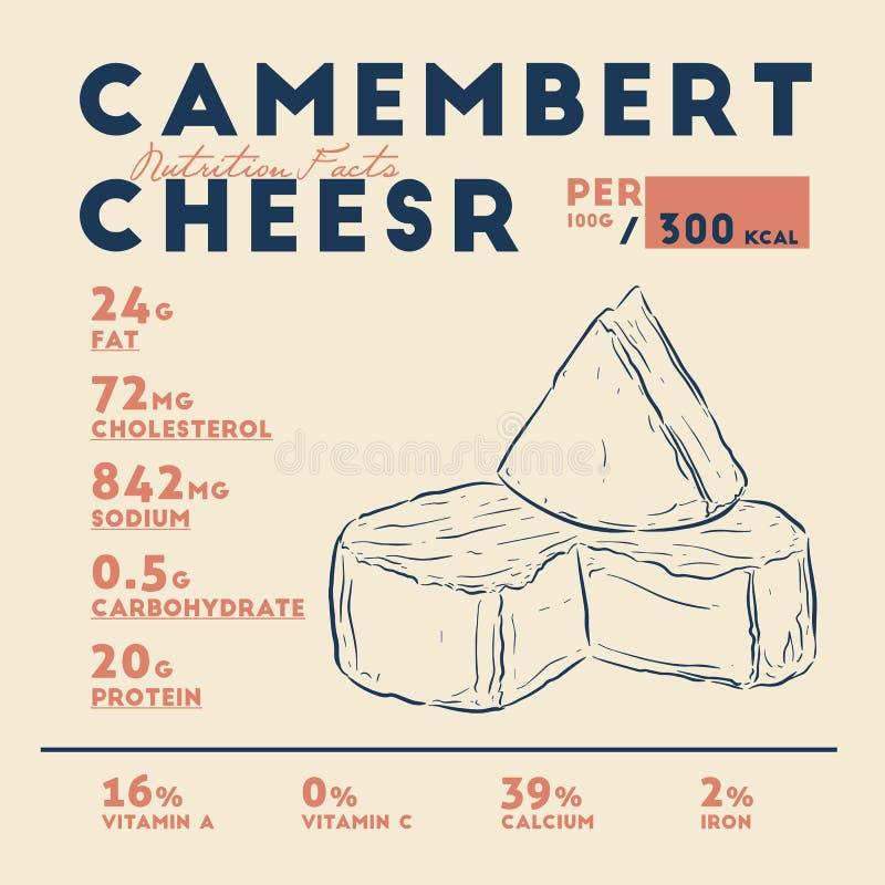 Hechos del queso del camembert, vector de Nutirion del drenaje de la mano libre illustration