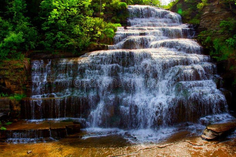 Hector Falls nella regione dei laghi finger fotografia stock