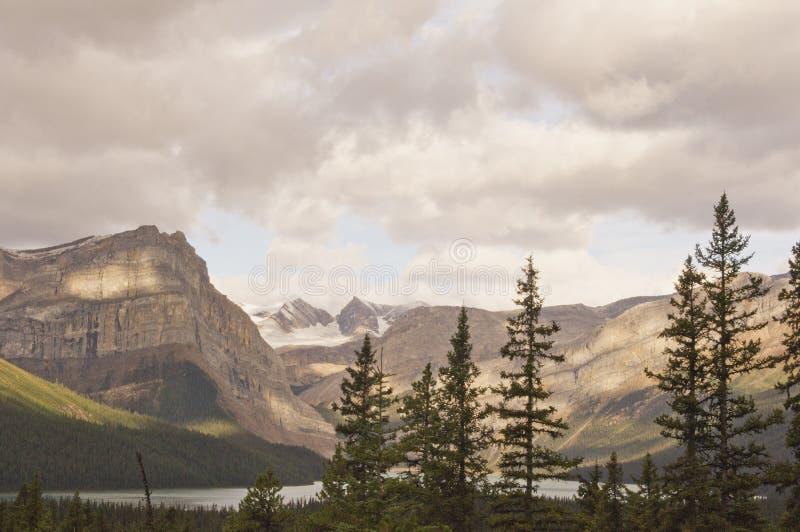 Hector Lake in Nationalpark Banffs in kanadischen Rocky Mountai lizenzfreie stockfotografie