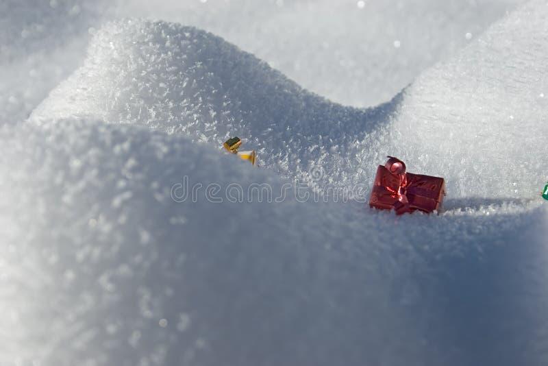 Heden in de sneeuw stock afbeelding