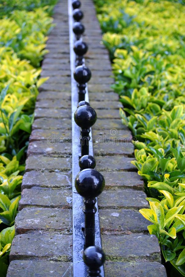 Hedge and boundary wall. The hedge and boundary wall stock photos
