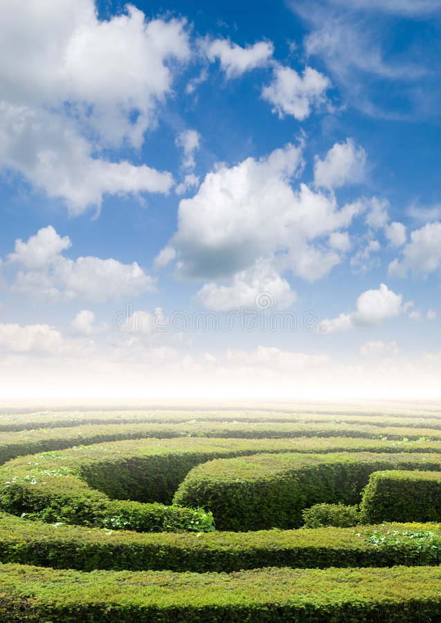 Hedge maze problem solving. Hedge maze under a summers sky, problem solving concept stock images