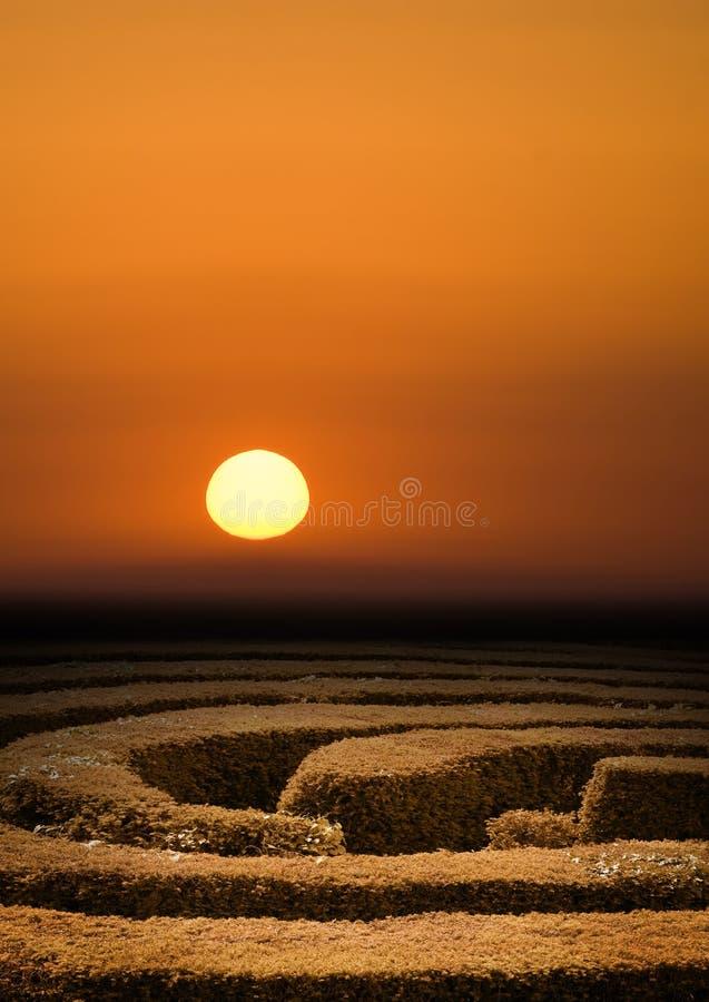 Hedge maze sunset