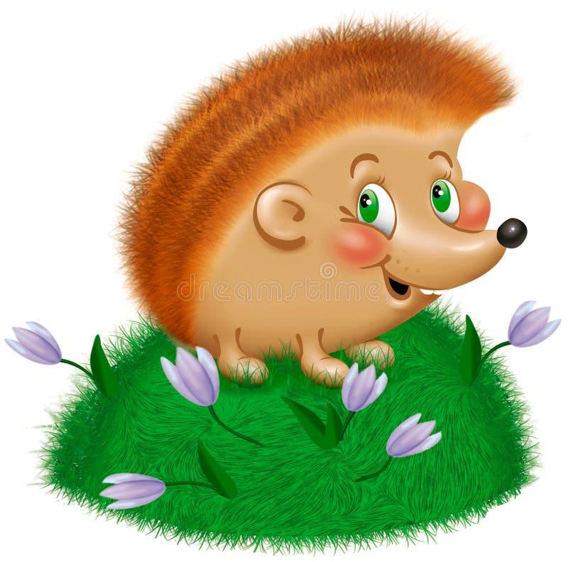 Download Hedgehog stock illustration. Illustration of summer, hedgehog - 10860257