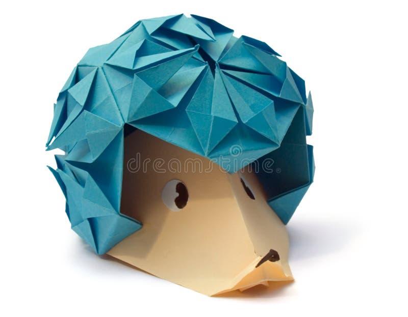 hedgehog стоковое изображение rf