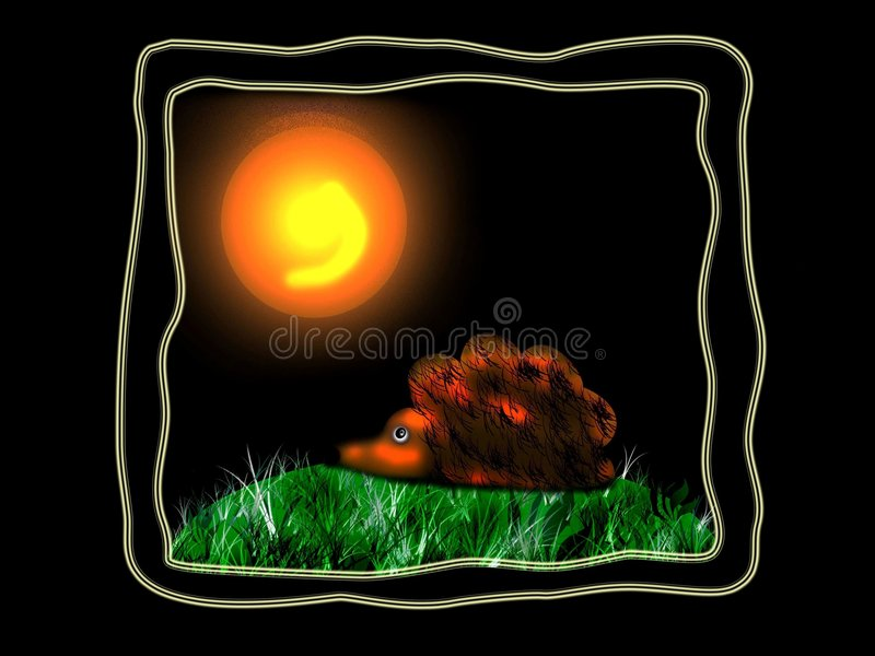 Hedgehog. On the grass at black background with sun stock illustration