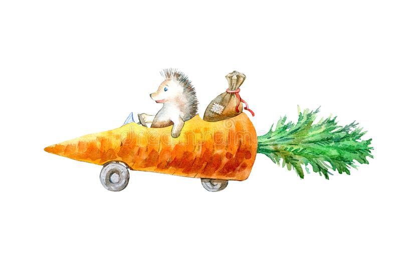 Hedgehog on a carrot machine.Travel sketch. White background. Watercolor hand drawn illustration stock illustration