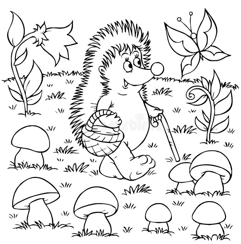 Hedgehog gathers mushrooms vector illustration