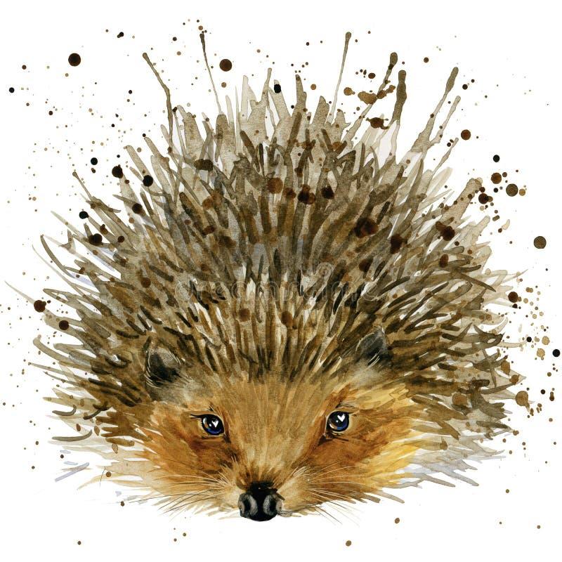 Hedgehog illustration with splash watercolor textured background royalty free illustration