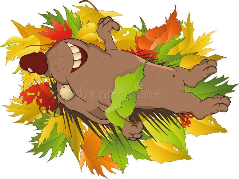 Hedgehog na madeira