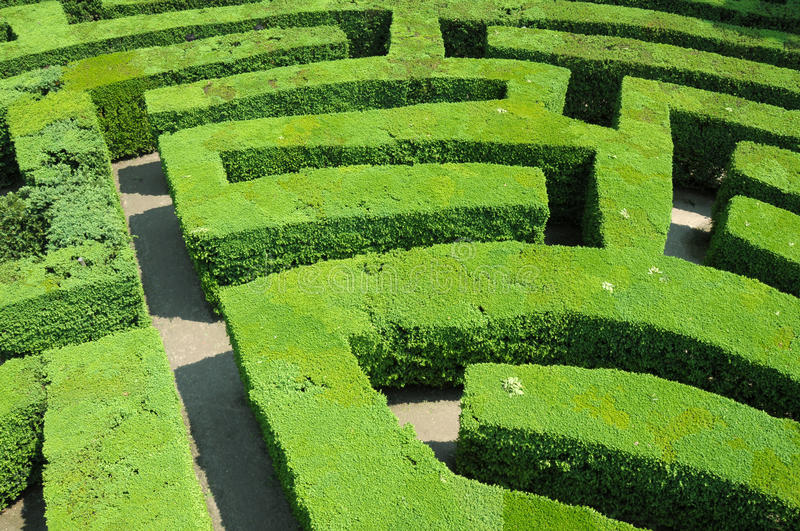 Hedges labyrinth stock photos