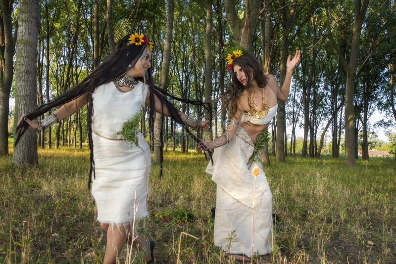 Hedniska flickor i skogdansen fotografering för bildbyråer