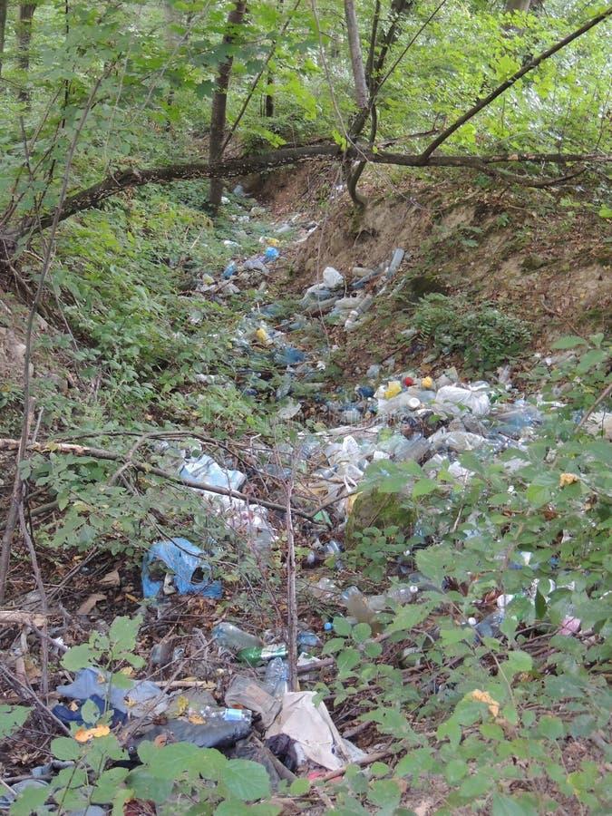 Heel wat afval in het bos stock foto