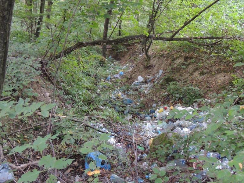 Heel wat afval in het bos stock afbeelding