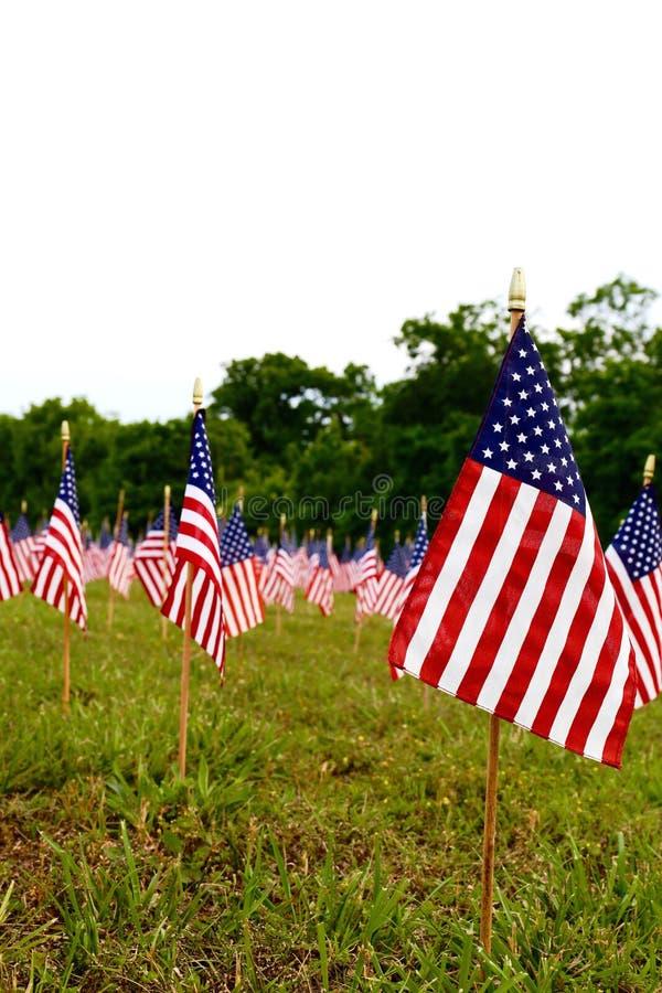 Heel wat Amerikaanse vlaggen stock afbeeldingen