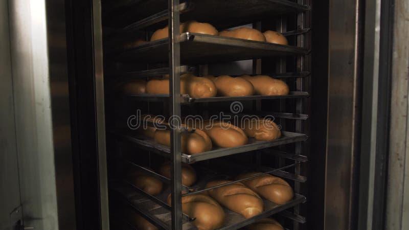 Heel wat kant-en-klaar vers brood in een bakkerijoven in een bakkerij Brood die zaken maken Vers brood van graangewassen met zade royalty-vrije stock fotografie
