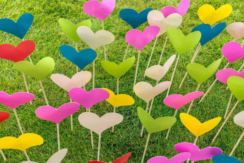 Heel wat kleurrijke document harten op houten stokken royalty-vrije stock foto