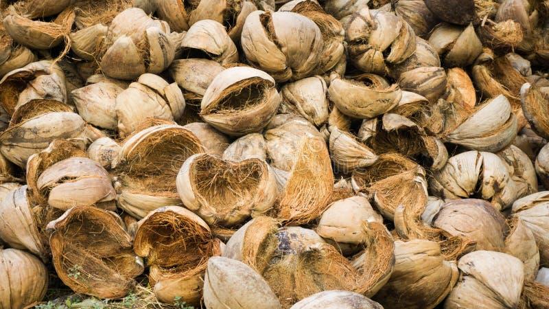 Heel wat kokosnotenshell doorstaan met dichte omhooggaande foto neemt met bruine kleur stock afbeeldingen