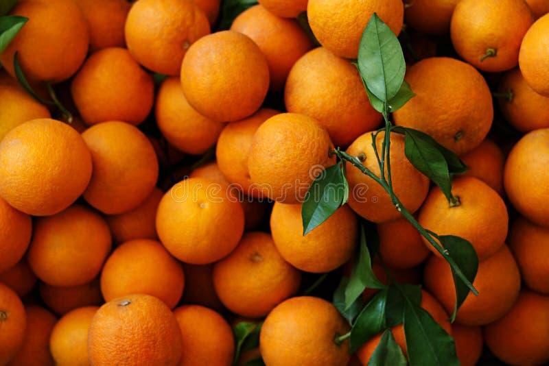 Heel wat rijpe sinaasappelen met groene bladeren royalty-vrije stock foto