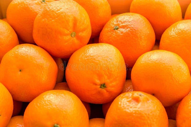 Heel wat sinaasappelen en mandarijnen in een nest stock fotografie