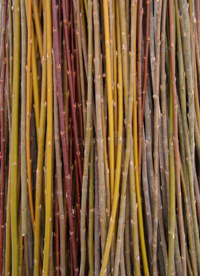 Heel wat wilgentakjes - grondstof voor mandewerk stock foto's