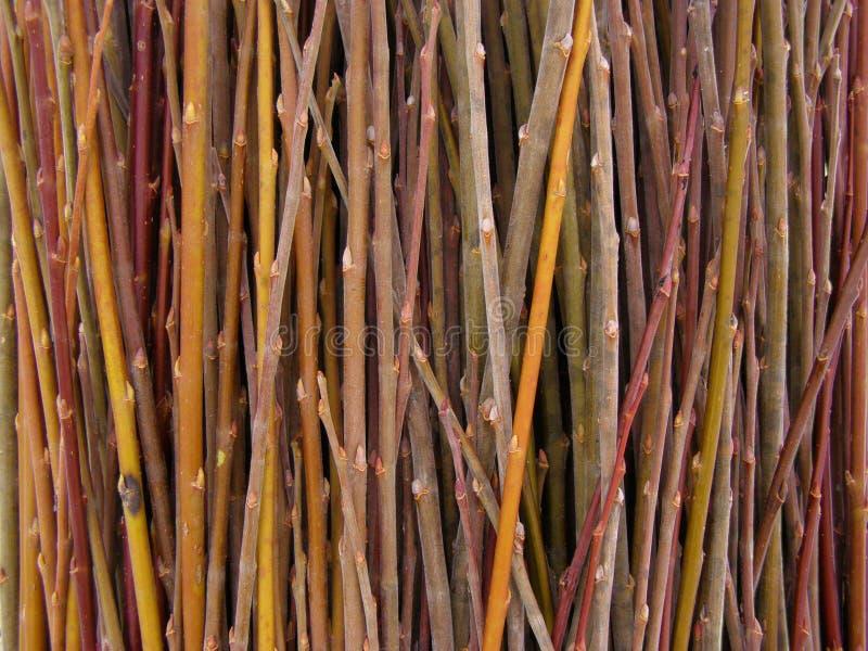 Heel wat wilgentakjes - grondstof voor mandewerk stock afbeelding