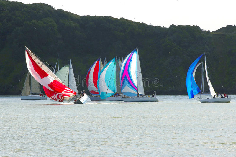 Heeling in a sailboat race. A sailboat heeling during a race with many colorful spinnakers stock image