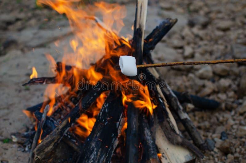 Heemst op een takje dat op een brand wordt geroosterd stock afbeeldingen