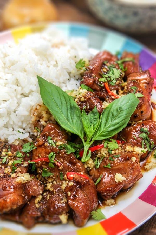 Heerlijk Vietnamees Gekarameliseerd Varkensvleesrecept stock afbeelding