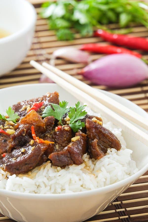 Heerlijk Vietnamees Gekarameliseerd Varkensvleesrecept stock fotografie