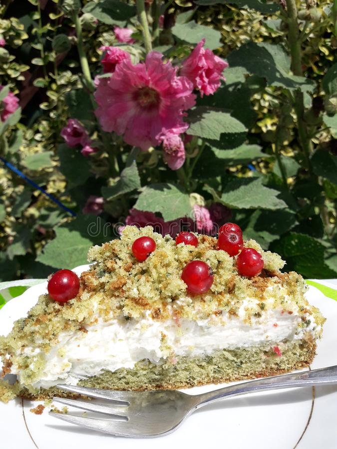 Heerlijke cakebes op de tuin stock afbeeldingen