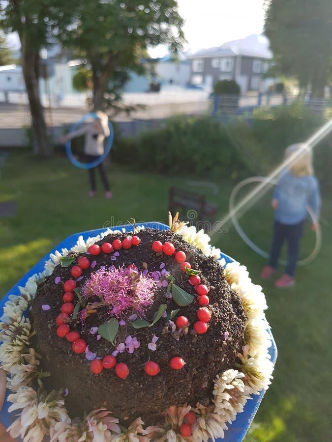 Heerlijke die cake van zand wordt gemaakt stock foto's