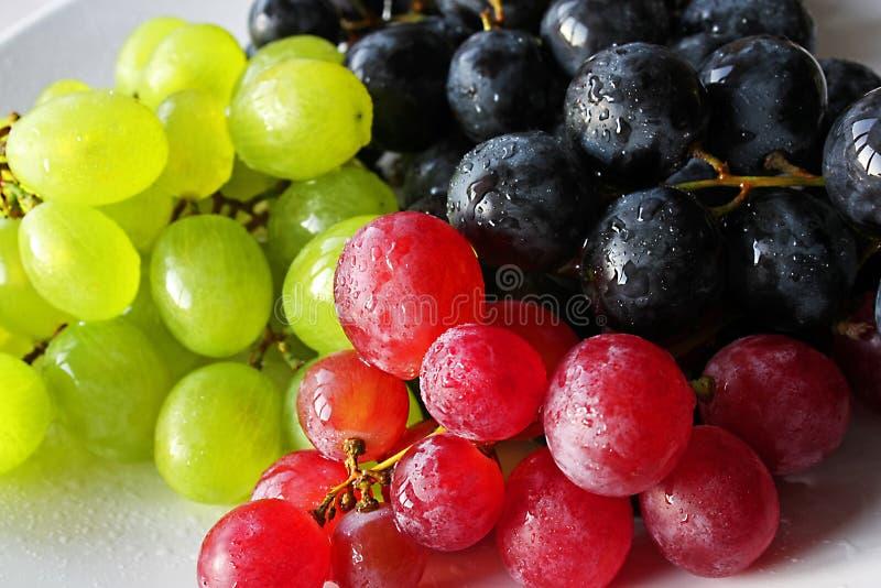 Heerlijke Druiven royalty-vrije stock fotografie
