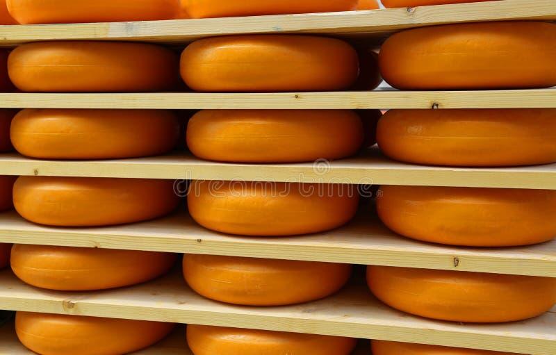 Heerlijke Edammer kaas in het rijpen van kaas in Amsterdam stock foto