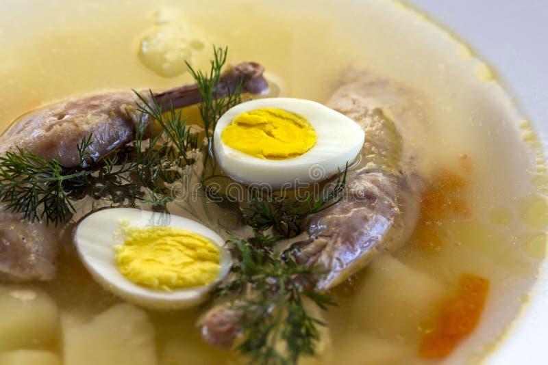 Heerlijke geurige die soep op kwartelsbouillon wordt gebaseerd in een witte het dineren plaat Plakken van vlees, kwartelsei, dill stock afbeeldingen