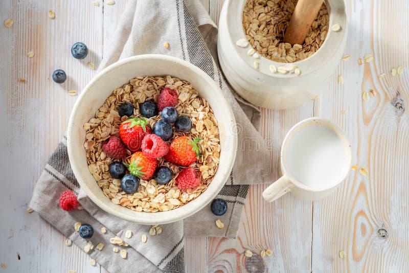 Heerlijke granola met verse vruchten als gezonde maaltijd royalty-vrije stock afbeeldingen