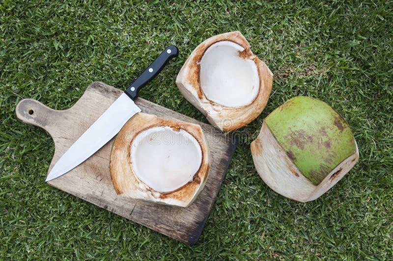 Heerlijke kokosnotenvruchten stock afbeeldingen