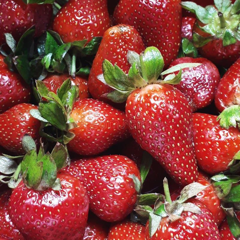 Heerlijke verse aardbeien stock afbeelding