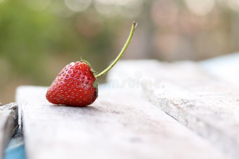 Heerlijke verse organische Strewberry royalty-vrije stock afbeeldingen