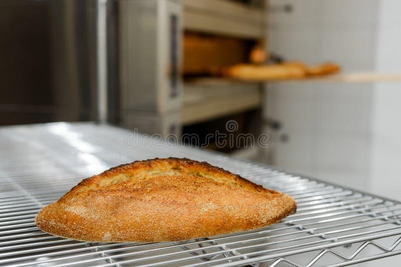 Heet brood op ovennet royalty-vrije stock fotografie