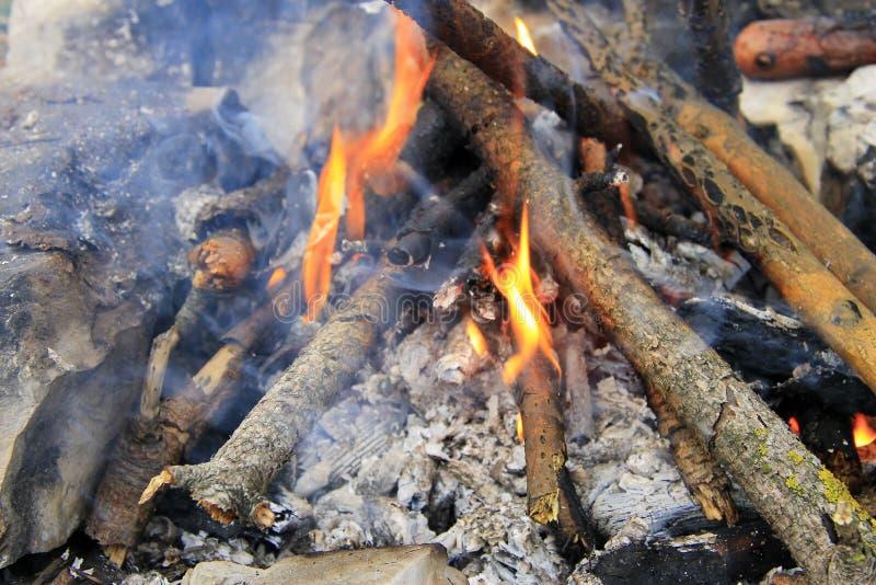 Heet Vuur die in het bos klaar voor barbecue vlammen stock afbeeldingen
