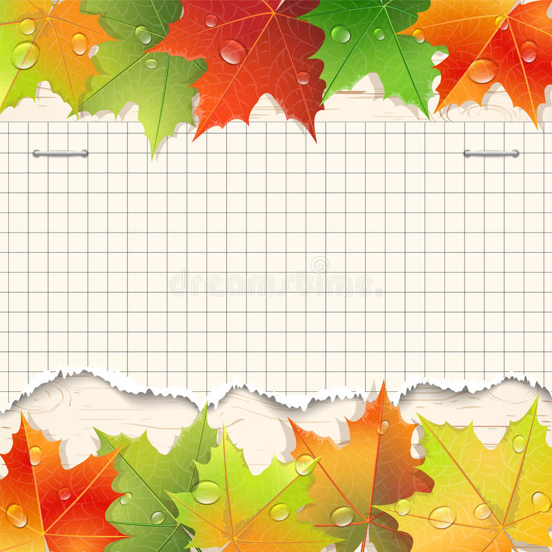 Heftige Papierblatt- und Herbstahornblätter vektor abbildung