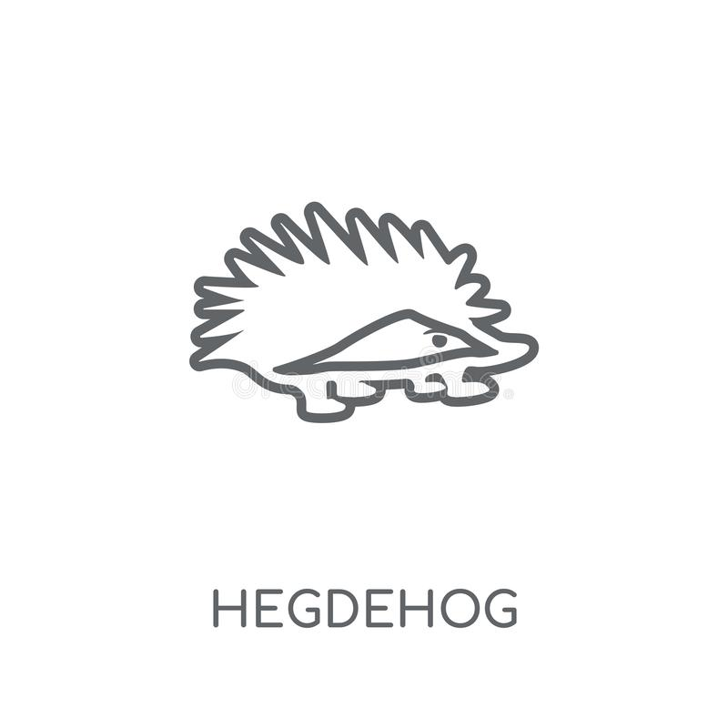 Hegdehog linear icon. Modern outline Hegdehog logo concept on wh. Ite background from animals collection. Suitable for use on web apps, mobile apps and print stock illustration