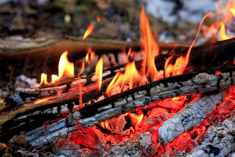 heiße Flamme des Lagerfeuers lizenzfreie stockfotos