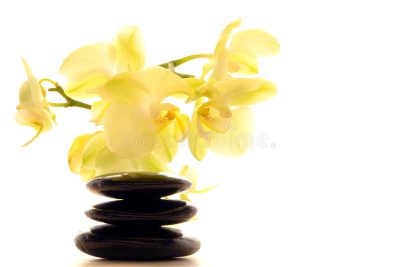 Heiße Poliermassage entsteint Steinhaufen und Orchidee stockbild