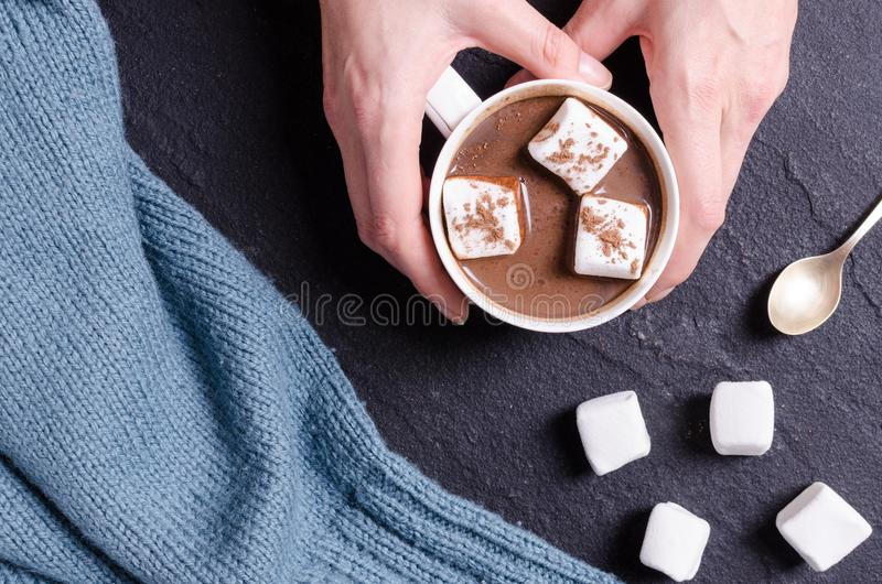 Heiße Schokolade mit Eibisch in der Frauenhand stockbild