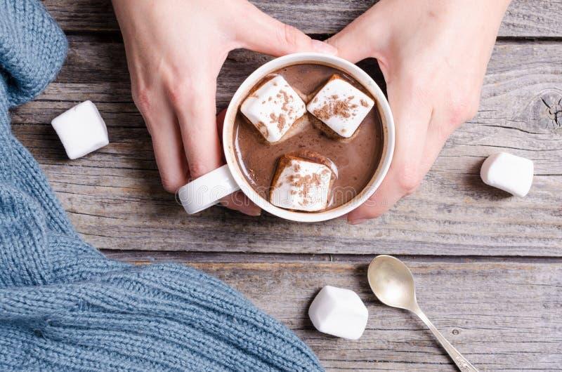 Heiße Schokolade mit Eibisch in der Frauenhand lizenzfreie stockbilder